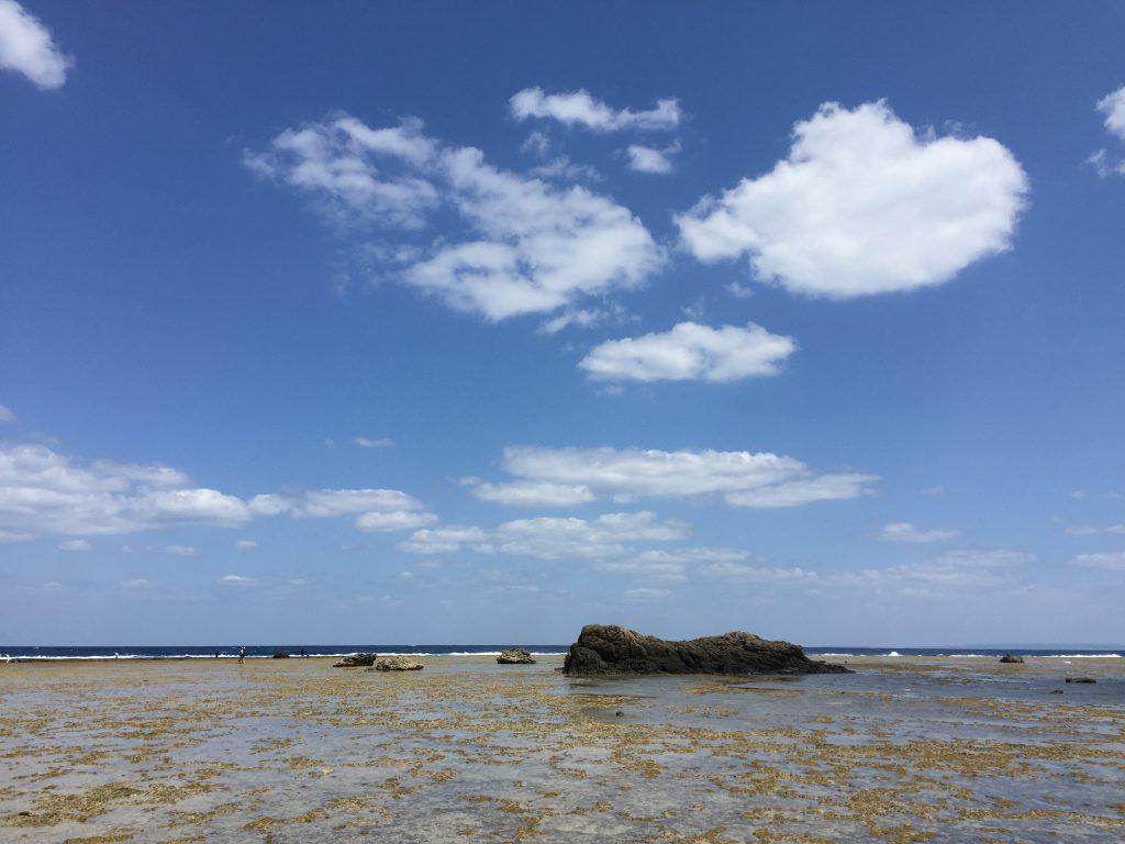 奄美大島5