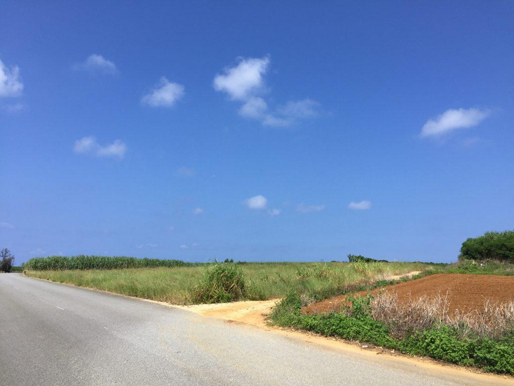 伊良部島の内陸部