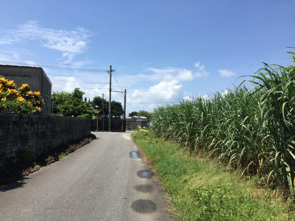宮古島の住宅街3