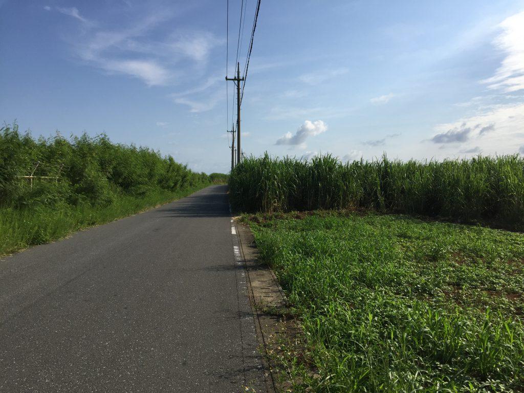 宮古空港への道
