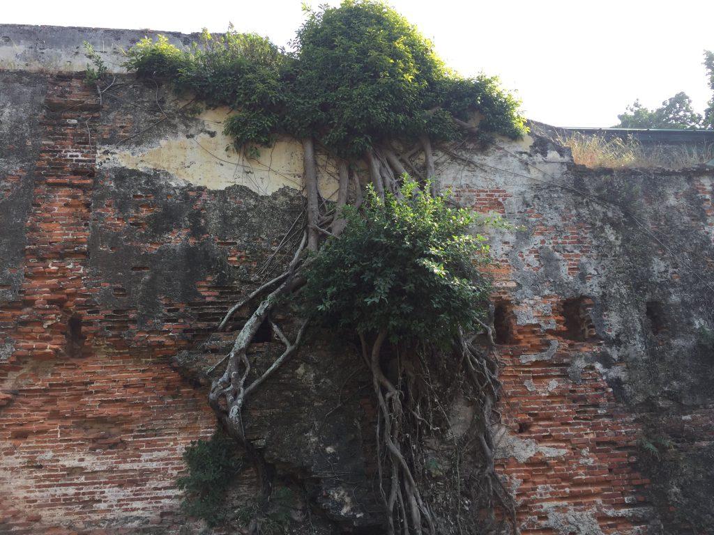 安平古堡4