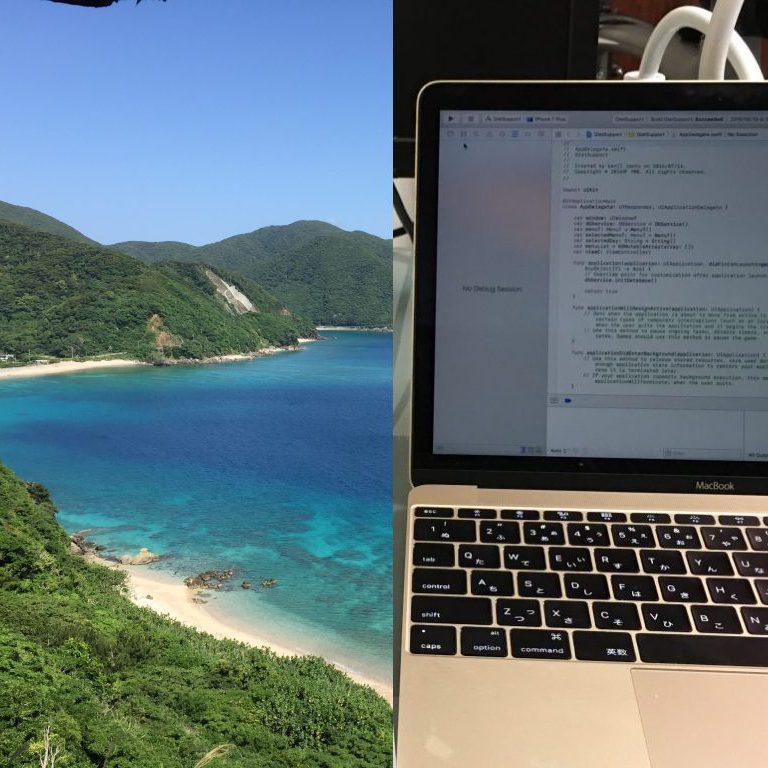 奄美大島で仕事