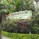 香港動植物公園は無料で楽しめる都会のオアシスだった