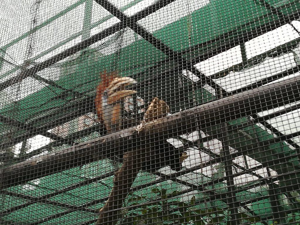 香港動植物公園7