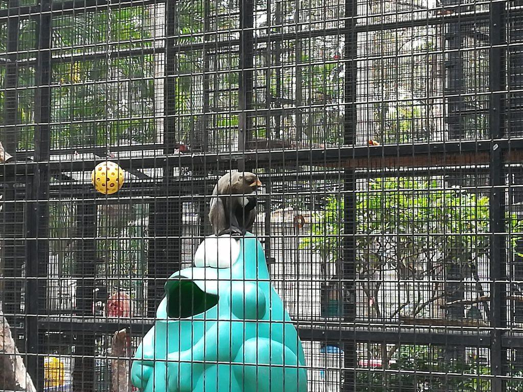 香港動植物公園9