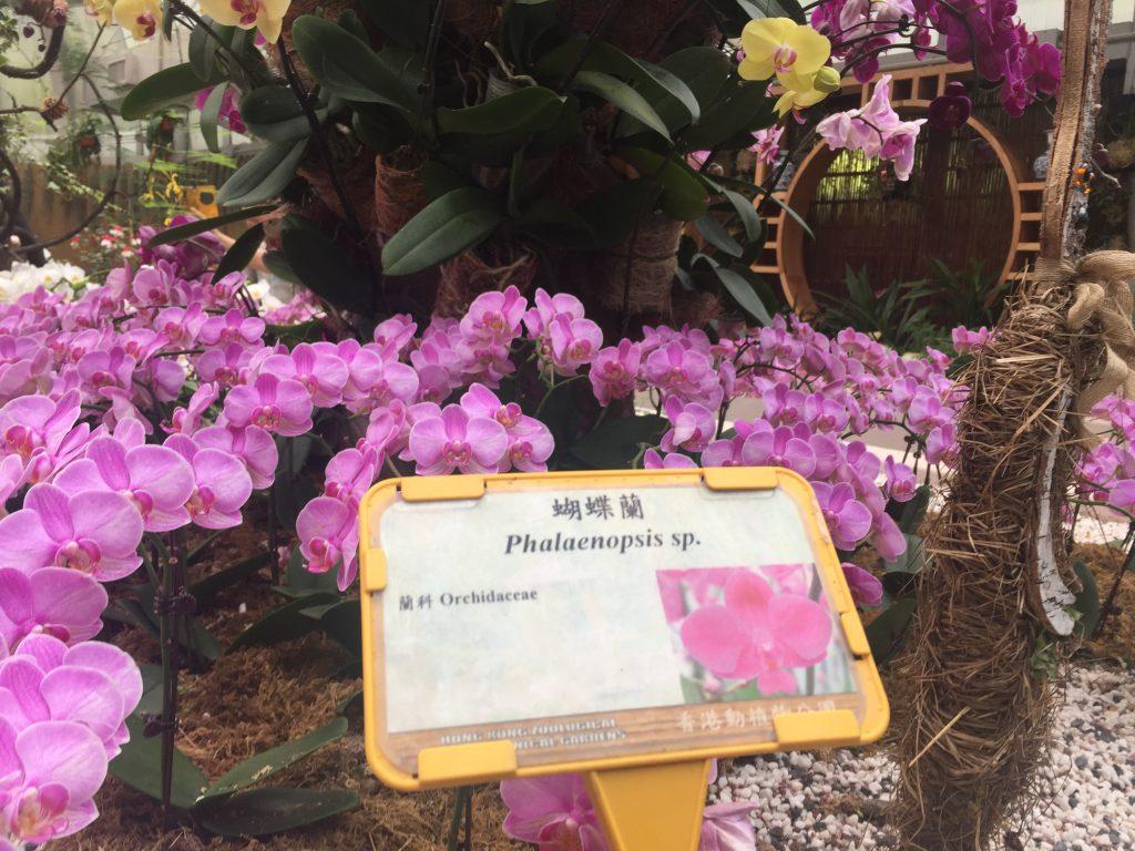 香港動植物公園12