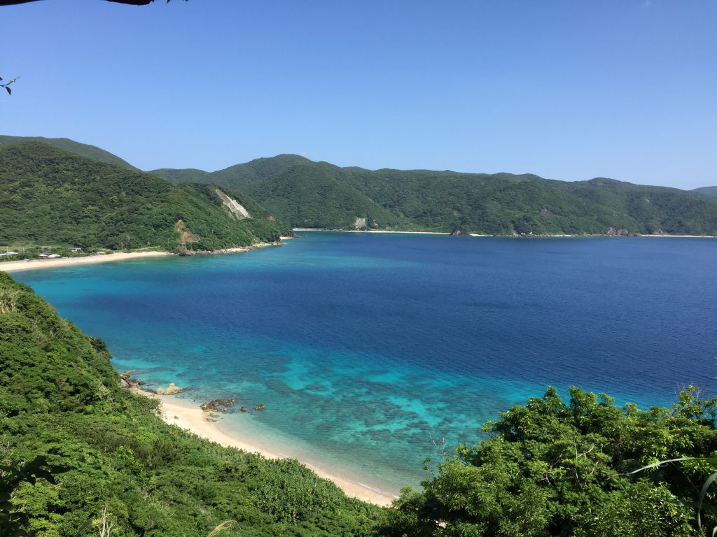 加計呂麻島の南側5