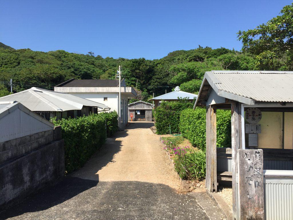 加計呂麻島の南側7