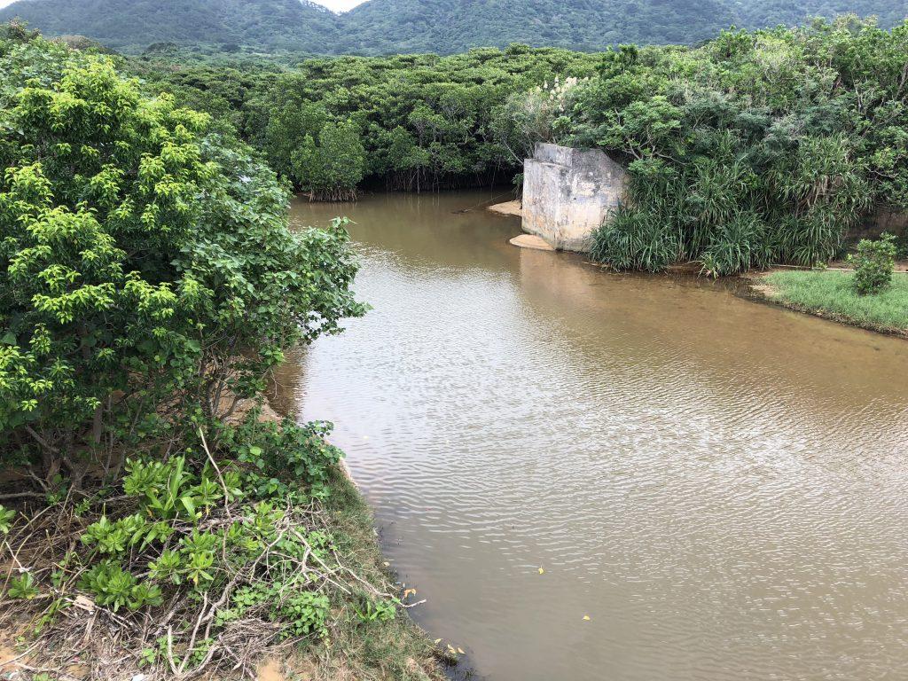石垣島でのルアー釣り19