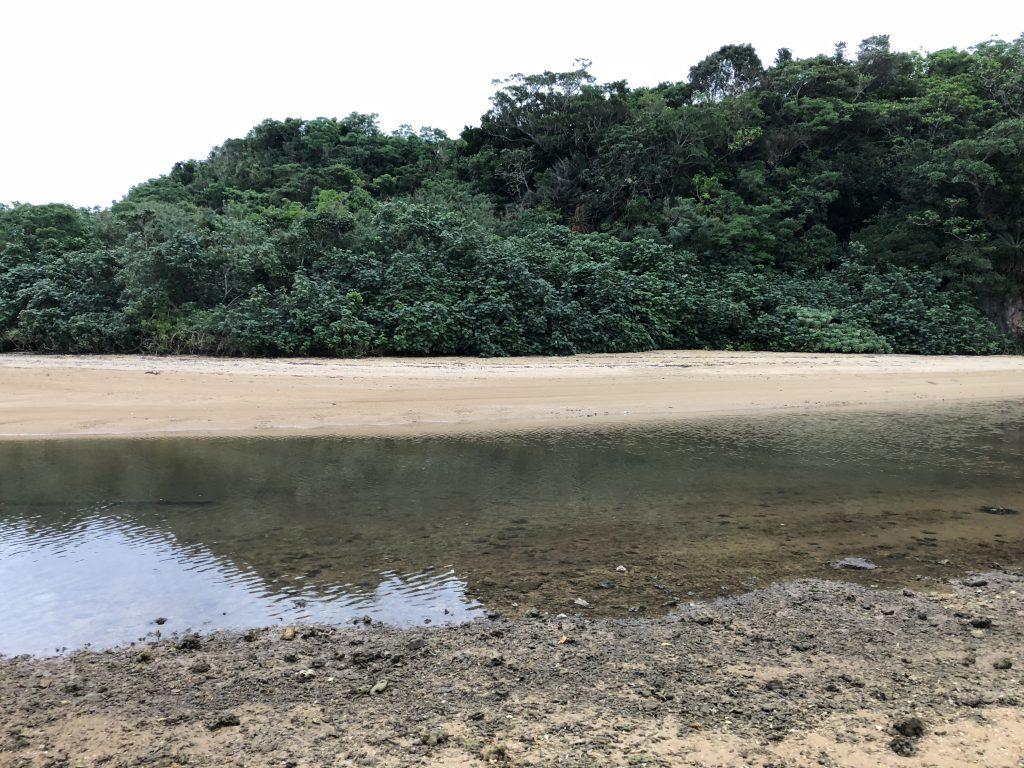 石垣島でのルアー釣り8