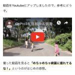 AMP対応の画面で動画が表示されました