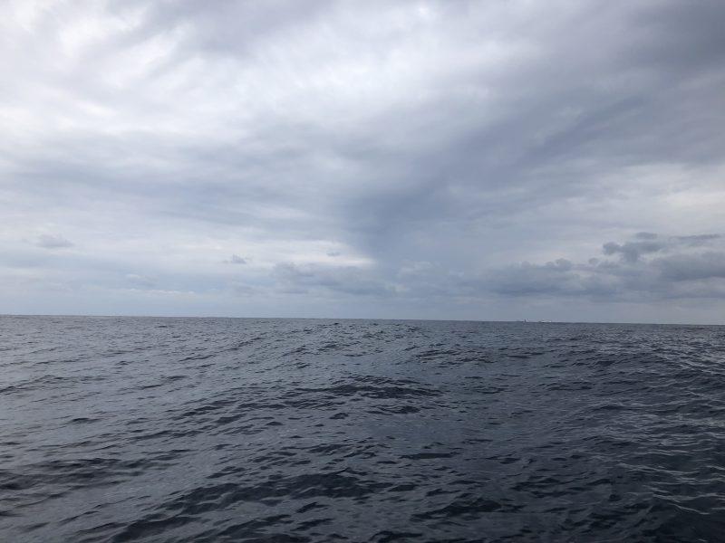 チヌ狙い奄美大島の釣り旅行記【2020年3月】の沖合