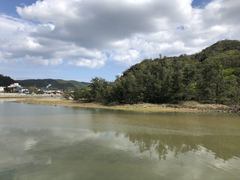 チヌ狙い奄美大島の釣り旅行記【2020年3月】の笠利