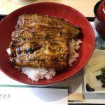 竹葉亭 新阪急ホテル店の鰻丼
