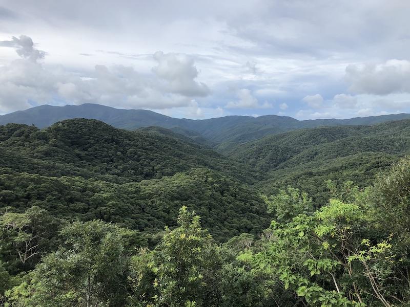 奄美の山々